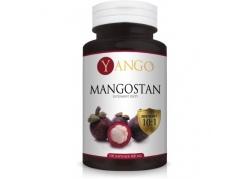 Mangostan - ekstrakt 10:1 (100 kaps.)