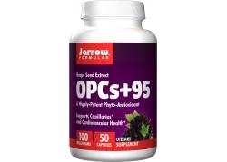 OPC 95% - ekstrakt z pestek Winogron (50 kaps.)
