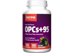 OPC 95% - ekstrakt z pestek Winogron (100 kaps.)
