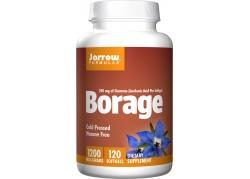 Borage - Olej z Ogórecznika (60 kaps.)