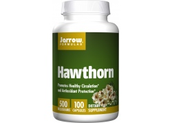 Głóg - Hawthorn 500 mg (100 kaps.)