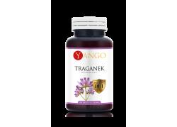 Astragalus - Traganek - ekstrakt 10:1 (100 kaps.)
