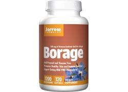 Borage - Olej z Ogórecznika (120 kaps.)