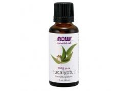 100% Olejek Eukaliptusowy (30 ml)