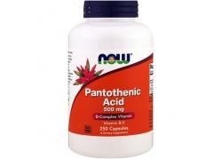 Pantothenic Acid - Kwas Pantotenowy (Witamina B5) 500 mg (250 kaps.)