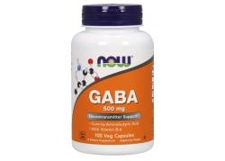 GABA - Kwas Gamma Aminomasłowy 500 mg + Witamina B6 (100 kaps.)