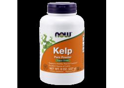 Kelp (naturalny Jod) - Morszczyn Pęcherzykowaty proszek (227 g)