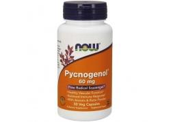 Pycnogenol - Ekstrakt z kory francuskiej Sosny Morskiej 60 mg (50 kaps