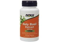 Holy Basil Extract - Święta Bazylia 500 mg (90 kaps.)