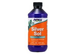 Silver Sol - Srebro 10 ppm (237 ml)