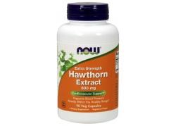 Głóg - Hawthorn Extract 600 mg (90 kaps.)