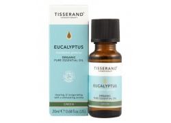 Eucalyptus Organic - Olejek Eukaliptusowy (20 ml)
