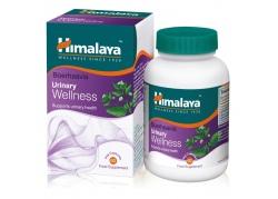 Boerhaavia Urinary Wellness (60 kaps.)