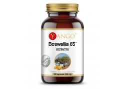 Boswellia 65 (60 kaps.)